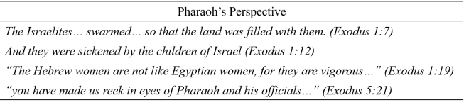 Pharaoh Perspective